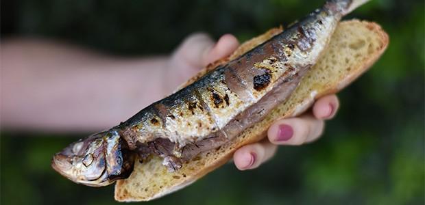 jun15-sardinha
